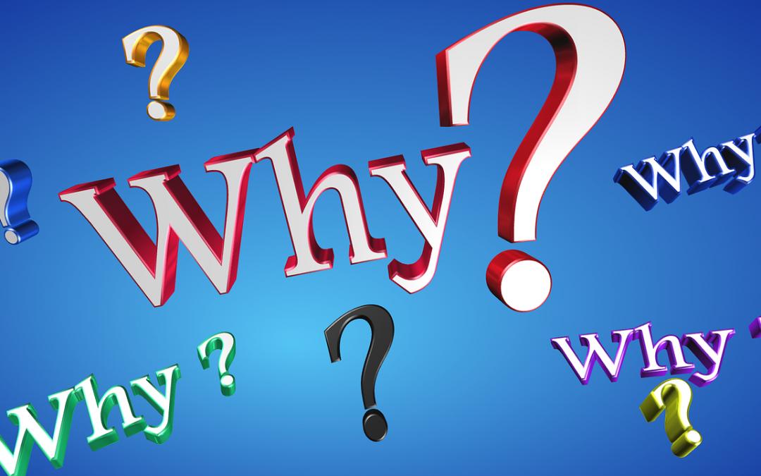 Why envyTV?